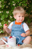 Little boy in the summer with strawberries Royalty Free Stock Image