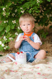 Little boy in the summer with strawberries. In hands Stock Photos