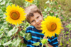 Little boy with sunflower Stock Images