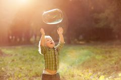 Little boy in the sunset catches soap bubbles Royalty Free Stock Image