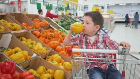 Little boy in supermarket smelling yellow bulgarian pepper sitting in the trolley. Shopping in store, fresh products for. Little boy in supermarket choosing stock video footage