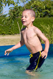 Little boy swims in the pool. Little boy swims in a swimming pool Stock Image