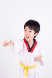 Little boy in a Taekwondo suit Royalty Free Stock Photo