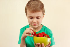 Little boy takes strawberry from the bowl Stock Images