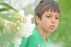 Little boy talking to somebody elses seriously. Little boy talking to somebody else`s seriously next to white oleander flowers Stock Photography