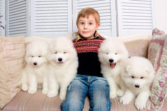 Little boy three years old playing with white puppies Stock Photos