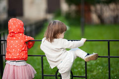 A little boy three years trying to climb over the fence royalty free stock photo