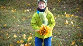 Little boy throwing autumn leaves on park stock footage