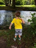 Little boy throwing leaves in the river. Toddler playing with leaves near a bank of the river Vrelo at the Tara mountain royalty free stock photography