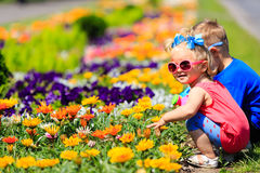 Little boy and toddler girl watering flowers in garden Royalty Free Stock Images