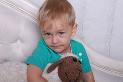 Little boy with toy sheep Stock Image