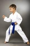 Little boy training karate Stock Image
