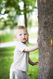 Little boy  and tree Royalty Free Stock Photo