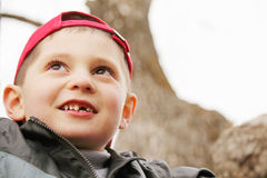 Little boy at tree Royalty Free Stock Photo