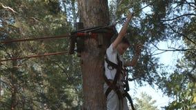 Little boy on a tree in an adventure park. Little boy on a tree in adventure park stock video