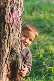 Little boy and a tree Royalty Free Stock Images