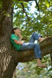 Little boy on tree Royalty Free Stock Image