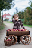 Little boy, with a trolley full of apples Stock Photo