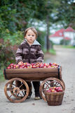 Little boy, with a trolley full of apples Royalty Free Stock Images