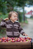 Little boy, with a trolley full of apples Royalty Free Stock Image