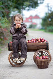 Little boy, with a trolley full of apples Stock Photos