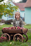 Little boy, with a trolley full of apples Stock Images