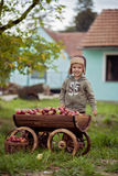 Little boy, with a trolley full of apples Royalty Free Stock Photo