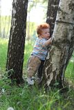 Little boy trying to walk by trees Royalty Free Stock Photo