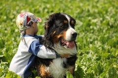Little Boy und Hund Stockfotografie
