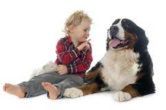 Little Boy und Hund Stockfotos