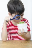 Little boy using magnifier watching new plant Royalty Free Stock Images