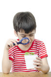 Little boy using magnifier watching new plant Royalty Free Stock Photo