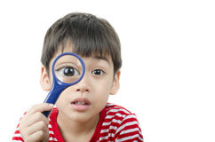Little boy using magnifier watching new plant Stock Image