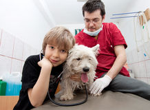 Little boy at vet with his dog Royalty Free Stock Photos
