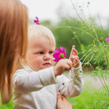 Little Boy Wącha kwiatu Obrazy Royalty Free