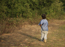 A little boy on a walk through a forest Royalty Free Stock Photo