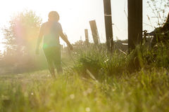 Little boy walking Stock Image