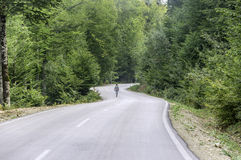 Little boy walking alone on the road in forest Stock Image