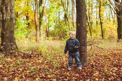 Little boy walking in autumn forest. Cute little boy standing near the tree in autumn forest. Boy playing with a knight Stock Image