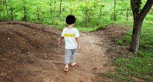 Little boy walking away in garden royalty free stock image