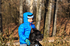 Little boy walking with big dog Stock Image