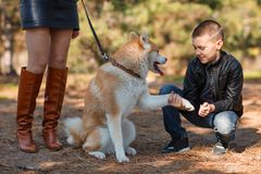 A little boy walking with dog in the park. Animal concept. Cute little boy having fun with doggie in the park outdoors. Happy family with puppy playing and Royalty Free Stock Photos