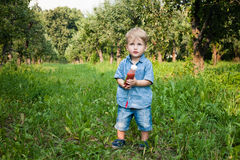 Little boy walks alone in a meadow and drinks juice Royalty Free Stock Photo