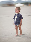 Little boy walks at the beach. Young kid walks along the sandy beach Royalty Free Stock Images