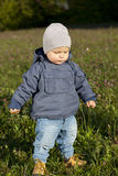 Little boy walks through the grass Royalty Free Stock Image