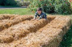Little boy walks in a maze made of bales of straw royalty free stock photography