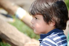A little boy watching. Animals at the zoo from a far Royalty Free Stock Photography