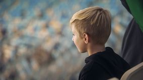 Little boy watching sport game at stadium, supporting favorite team, close-up. Stock photo royalty free stock image