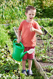 Little boy with watering can in vegetable garden Royalty Free Stock Photography