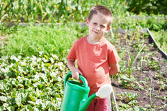 Little boy with watering can in vegetable garden Stock Photo